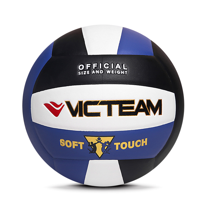 Standard Size Volleyball