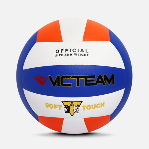 Personalized Imprinted Volleyballs